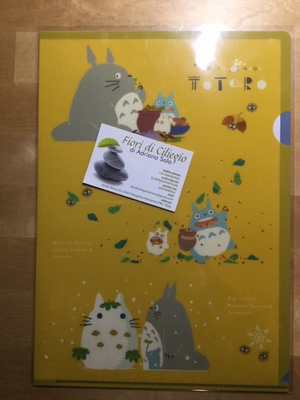 TOTORO CLEAR FILE A4